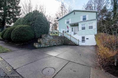 Morgantown WV Single Family Home New: $241,000