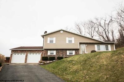 Morgantown WV Single Family Home New: $274,850