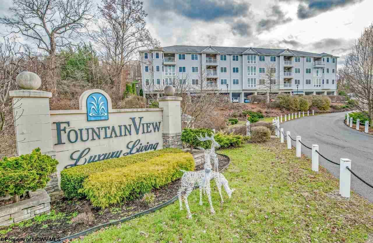 217 Fountain View Drive,