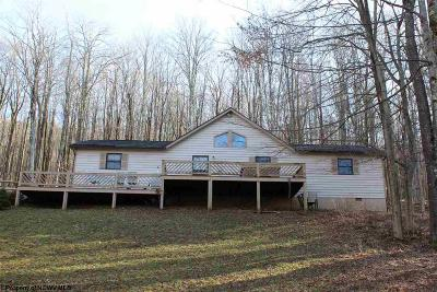 Davis Single Family Home For Sale: 914 Cabin Mountain Road