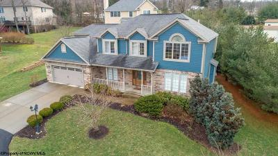 Morgantown Single Family Home For Sale: 125 Clearwood Drive