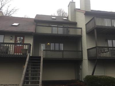Morgantown Condo/Townhouse For Sale: 613 Mariner Village Drive