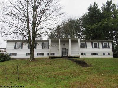 Morgantown Single Family Home For Sale: 771 Fairmont Road