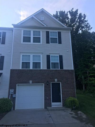 Morgantown Condo/Townhouse New: 219 Summerfield Drive