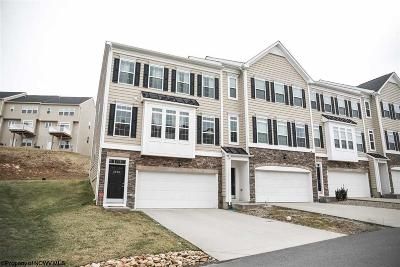 Morgantown Condo/Townhouse New: 3510 Sun Trail