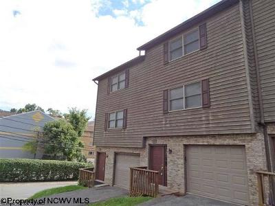 Morgantown Condo/Townhouse New: 123 Stonegate Circle