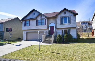 Morgantown Single Family Home Contingent: 12 Pleasant Ridge Lane