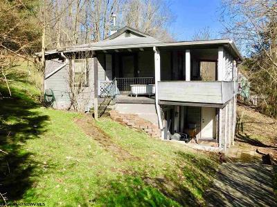 Morgantown Single Family Home For Sale: 2060 Lloyd Avenue