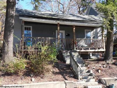Morgantown Single Family Home For Sale: 2029 Listravia Avenue