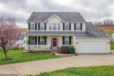 Morgantown Single Family Home For Sale: 321 Dairy Lane