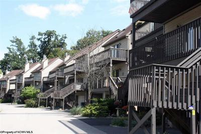 Morgantown Condo/Townhouse For Sale: 641 Mariner Village