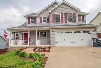Morgantown Single Family Home For Sale: 195 Eastgate Drive