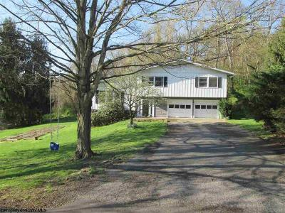 Morgantown Single Family Home Contingent: 702 Courtney Avenue