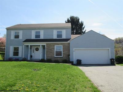 Morgantown Single Family Home For Sale: 362 Tyrone Avery Road