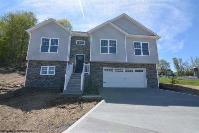 Morgantown Single Family Home New: 213 Angel Falls Way
