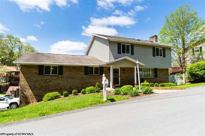 Morgantown Single Family Home New: 124 Morgan Drive