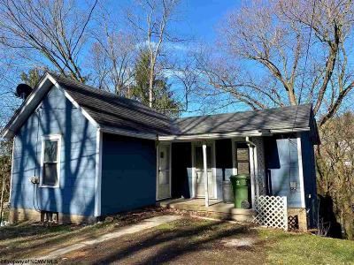 Morgantown Multi Family Home For Sale: 1017 Charles Avenue