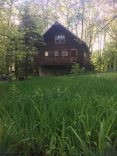 Terra Alta Single Family Home For Sale: 287 Dogwood Lane
