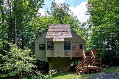 Davis Single Family Home For Sale: 45 Snowdrift Lane