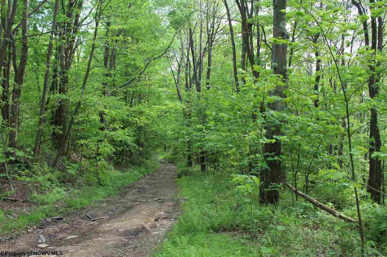 0 Spruce Run Fork,