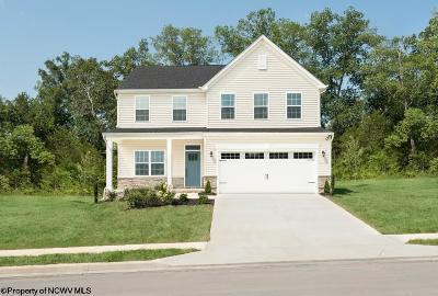 Morgantown Single Family Home For Sale: 84 Lavista Drive