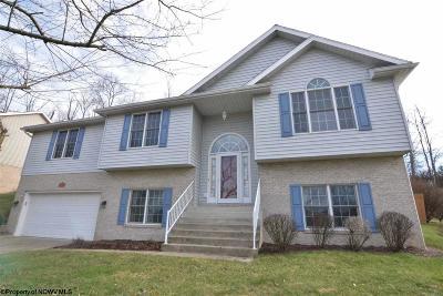 Morgantown Single Family Home For Sale: 574 Rollingwood Street