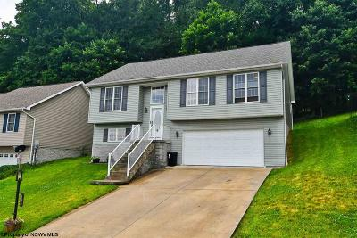Morgantown WV Single Family Home New: $246,500