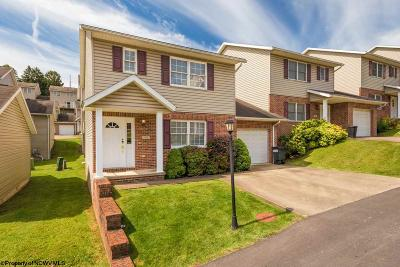Morgantown Condo/Townhouse New: 120 Meadowridge Drive