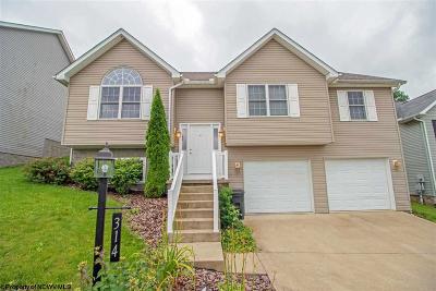 Morgantown Single Family Home For Sale: 314 March Lane