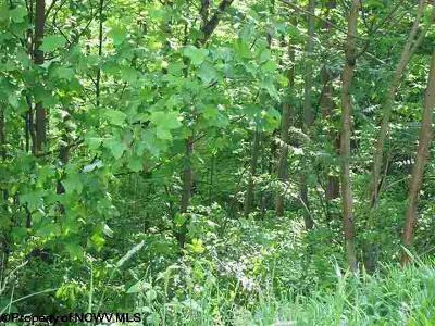 Morgantown WV Residential Lots & Land For Sale: $60,000