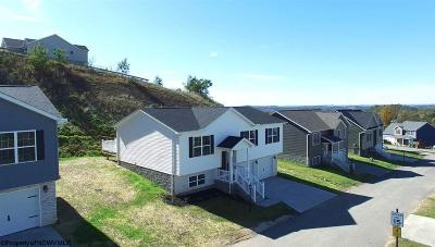 Morgantown Single Family Home For Sale: 127 Landing Drive