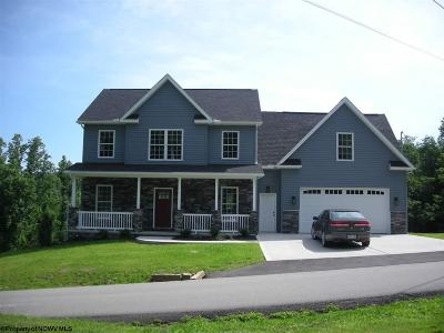 Morgantown Single Family Home For Sale: 138 Morgans Run Road