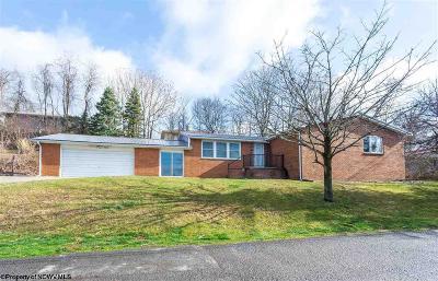 Morgantown Single Family Home For Sale: 1117 Wayne Avenue