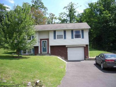 Morgantown Single Family Home For Sale: 117 E Hillview Drive
