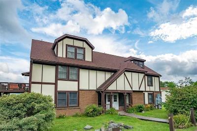 Davis Condo/Townhouse For Sale: 164-A7 Talheim Drive