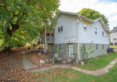 Morgantown Single Family Home For Sale: 1244/1246 Eastern Avenue