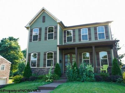 Morgantown Single Family Home New: 1073 Windsor Avenue