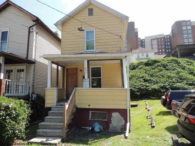 Morgantown Multi Family Home New: 232 McLane Avenue