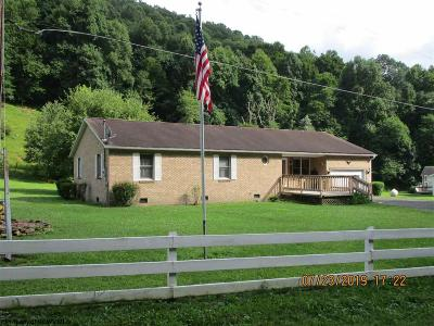 Elkins Single Family Home For Sale: 244 Evans Run Road
