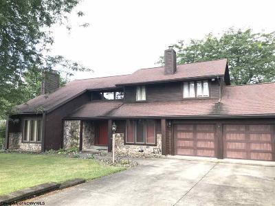 Morgantown Single Family Home For Sale: 123 Skyline Drive