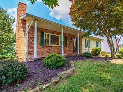 Morgantown Single Family Home For Sale: 1028 Imperial Drive