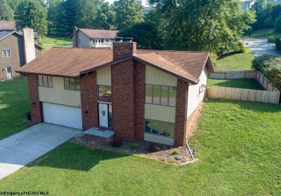 Morgantown Single Family Home Contingent: 100 Willow Wick Drive