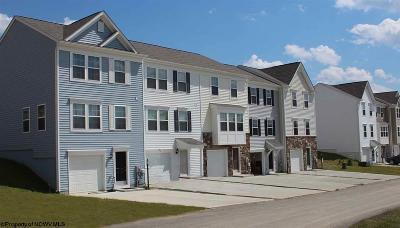 Morgantown Condo/Townhouse For Sale: 519 Turquoise Lane