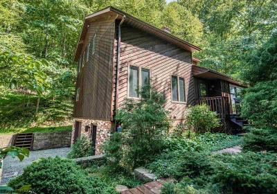 Morgantown Single Family Home Contingent: 1484 Tyrone Road
