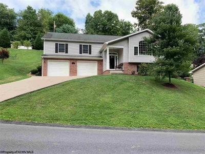 Morgantown Single Family Home For Sale: 105 Forest Drive