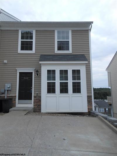 Morgantown Condo/Townhouse Contingent: 333 Falcon Run Road
