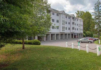 Morgantown Condo/Townhouse For Sale: 127 Fountain View Drive
