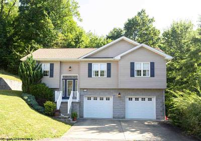 Morgantown Single Family Home For Sale: 331 Hidden Point Trail