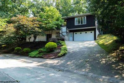 Morgantown Single Family Home For Sale: 116 Poplar Drive