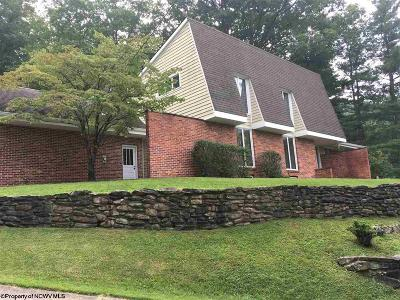 Elkins Single Family Home For Sale: 299 1/2 Marro Drive